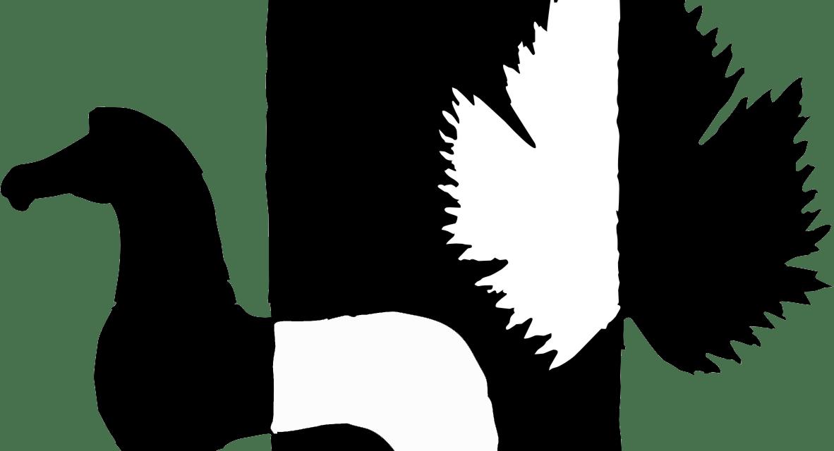 ΣΥΓΧΑΡΗΤΗΡΙΑ ΕΠΙΣΤΟΛΗ ΔΗΜΑΡΧΟΥ ΜΑΡΚΟΠΟΥΛΟΥ ΜΕΣΟΓΑΙΑΣ προς τη Νεανική Γυναικεία Ομάδα Βόλει Α.Ο.Μ