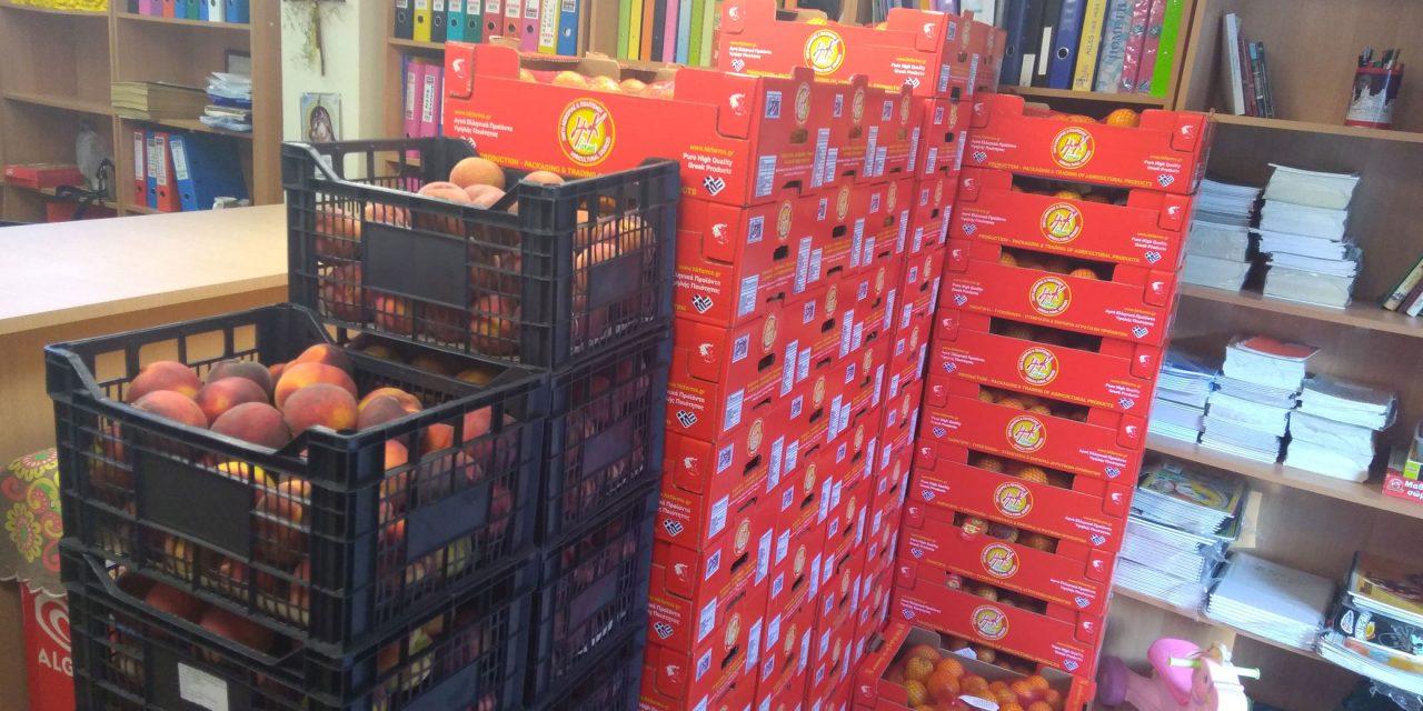 Ευχαριστήρια επιστολή Δήμου Μαρκοπούλου για την προσφορά φρούτων στο Κοινωνικό Παντοπωλείο του Δήμου